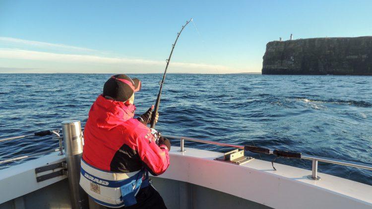 Porbeagle shark fishing in scotland planet sea fishing for Shark fishing from shore