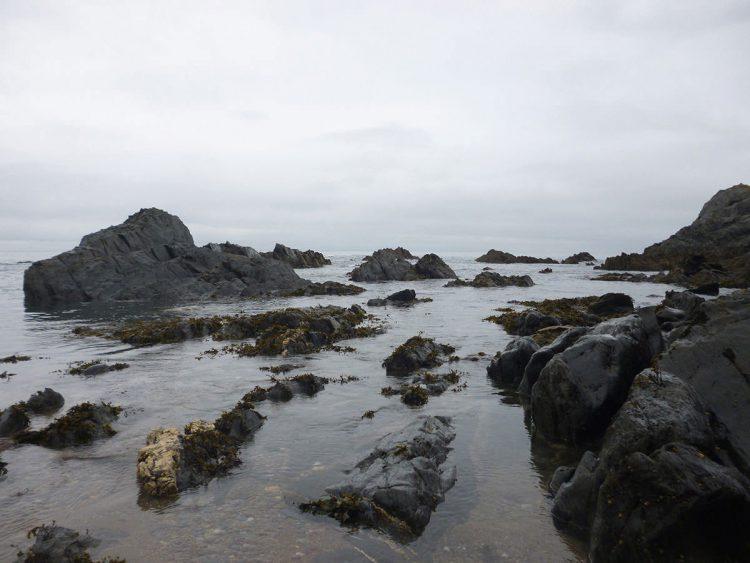 Locating South Devon Bass - A prospective Devon bass mark