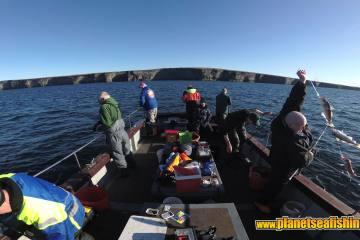 haddock fishing