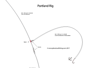 the portland rig