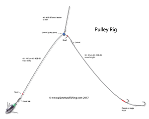 the pulley rig