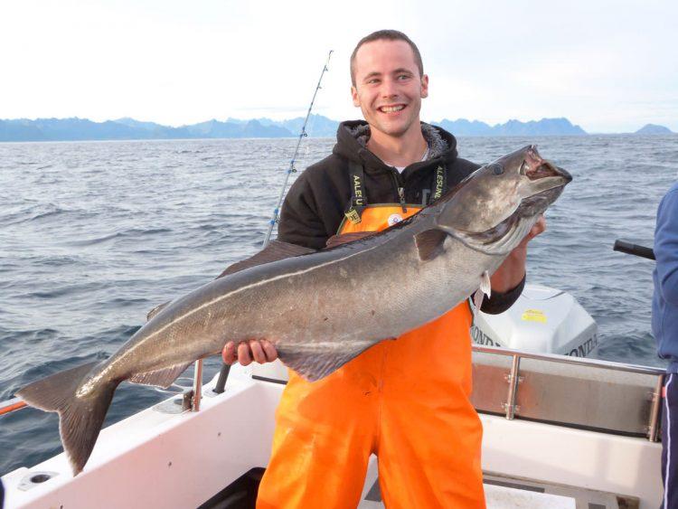 a huge Norway coalie