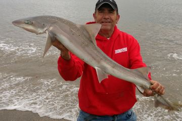 John with a good a Lincolnshire smoothhound