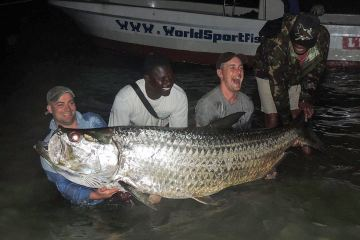 the 246lb Guinea Bissau tarpon