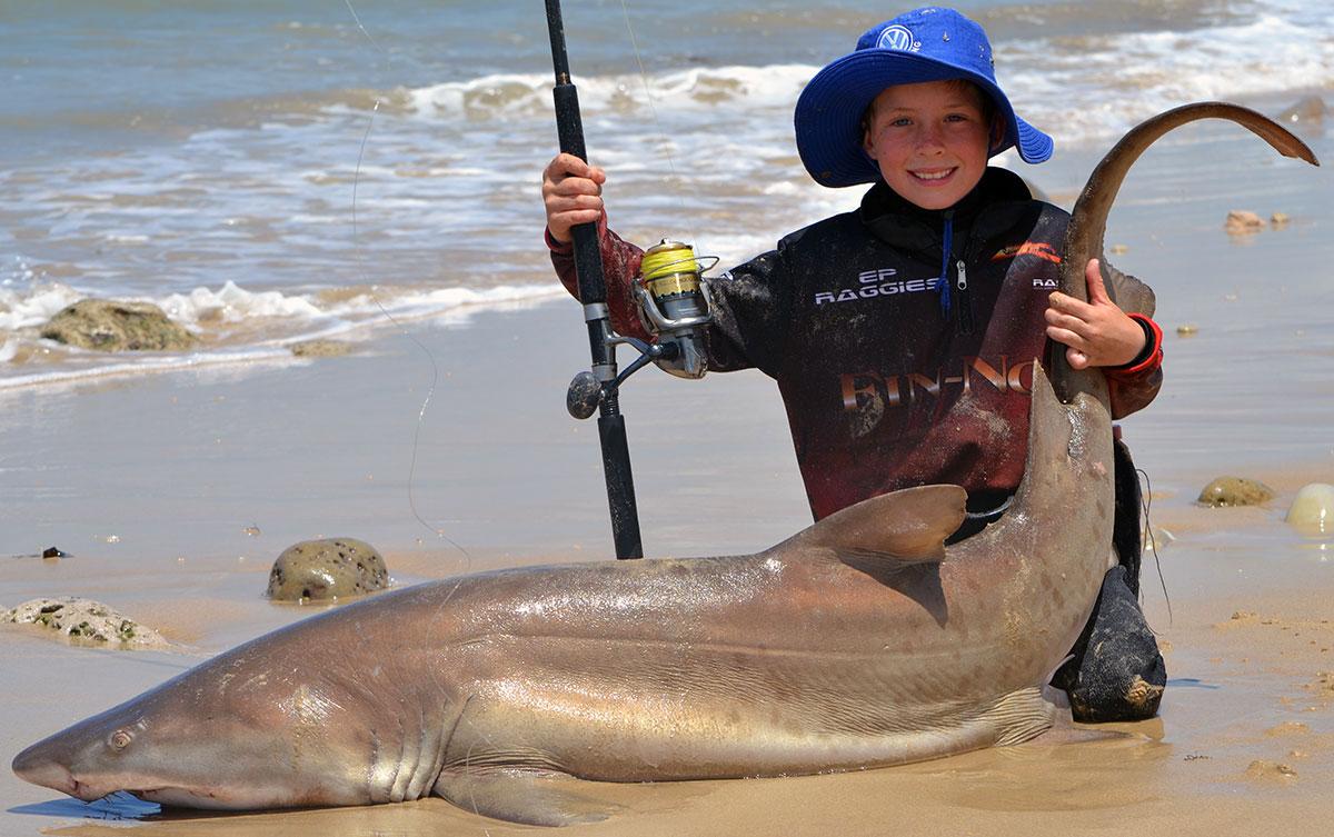 Daniel the wonder kid planet sea fishing for Shark fishing from shore