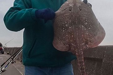 Dave Carr with his thornback ray