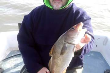 `Alan Tipple seems to be catching his share of codling this year