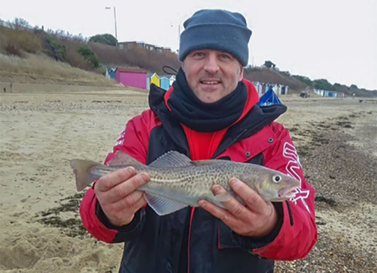 codling caught in the latest Colchester Sea Angling Club match