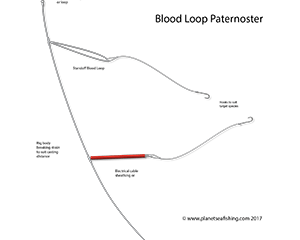 blood loop paternoster rig