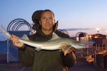 Local angler Den Doherty with a Clacton Pier smoothhound