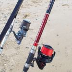 Fixed spool setip for Essex thornback ray