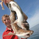 an angler with three dogfish