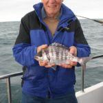 Weymouth plaice fishing Supernova bream