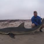 Mark Harding with a bronze whaler shark from Namibia
