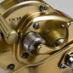 Sea Angling for Beginners - Multiplier Reels star drag