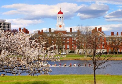 Image result for sightseeing harvard university boston