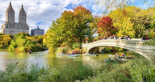 Image result for central park new york tourist attractions