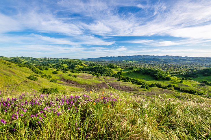 Are mount diablo state park campsites sold out? 12 Top Rated Campgrounds Near San Francisco Ca Planetware