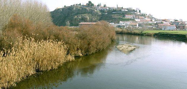 Atravesar Madrid por la ribera del Jarama