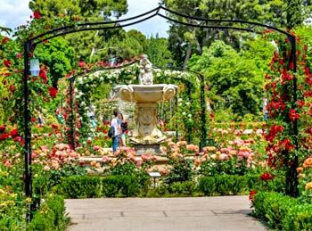 Rosaleda Parque del Retiro