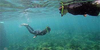 Snorkel en Illes Medes
