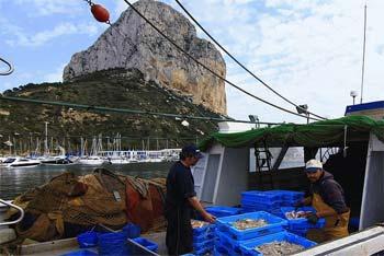 Turismo pesquero Calpe
