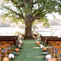 pumpkin wedding cermony