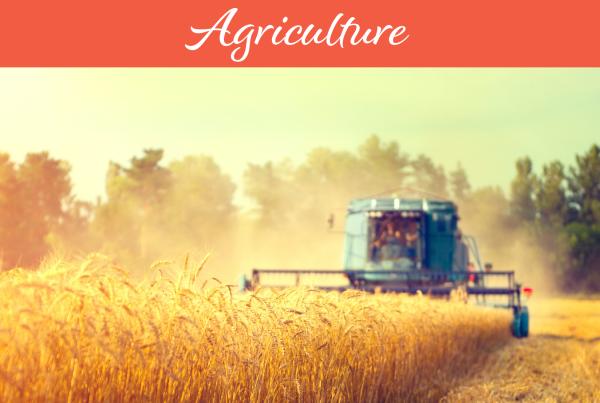 Retrospective on Agriculture