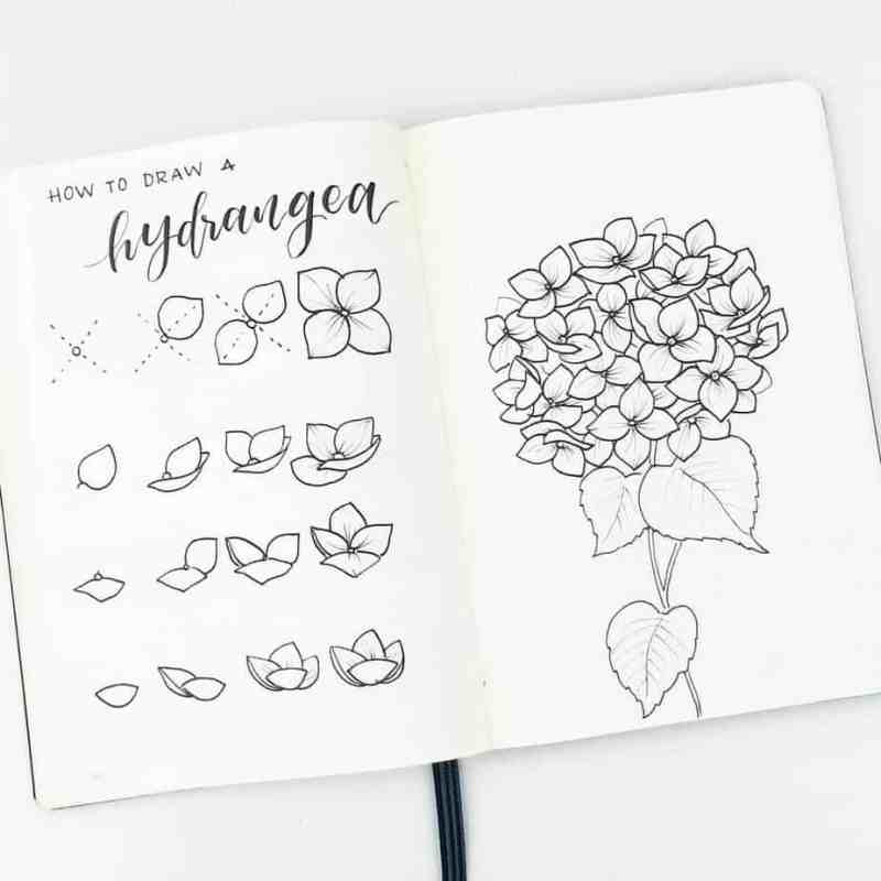 How to draw perfect flower doodles for bullet journal spreads flower doodles are beautiful and add creative flaire to literally any bullet journal thankfully my mightylinksfo
