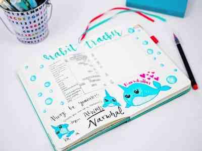 Bullet journal narwhal doodle habit tracker