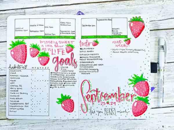 bullet journal weekly strawberries white gel pen