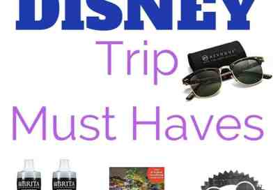 Top Things You Need For Your Disney Trip 2018