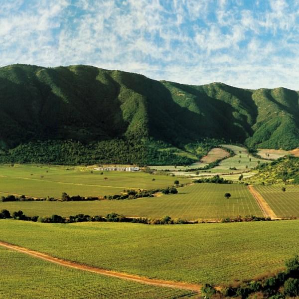 Santiago & Wine Country