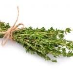 El Tomillo: elimina piojos, parásitos y pulgas