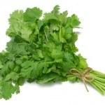 Usos del cilantro: sus beneficios y aplicaciones en la salud y cocina