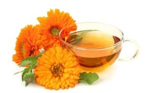 Caléndula, la flor maravilla: Beneficios y Propiedades Medicinales