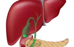 Alimentación y Recuperación de pacientes afectos de Cáncer Hepático