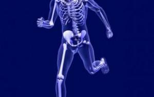 Osteoporosis: prevención y tratamientos mediante la Farmacopea China