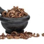 Magnolia officinalis beneficios y usos en medicina tradicional