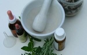 Ajenjo: Planta medicinal útil como Digestivo, para Reumas, Parásitos...
