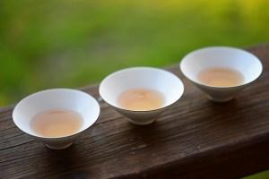 Plantas Medicinales de la fitoterapia china para Disolver las Flemas y Aliviar la Tos