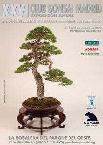 club bonsai