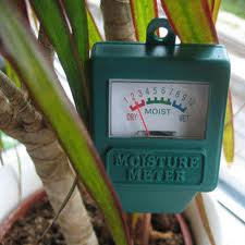 Dispositivo especial para plantas
