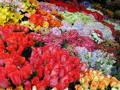 Mercado de las flores en Córdoba