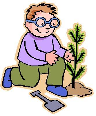 20 de marzo: Día del árbol