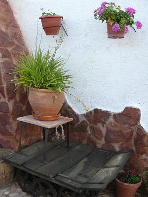 500 euros por decorar con plantas
