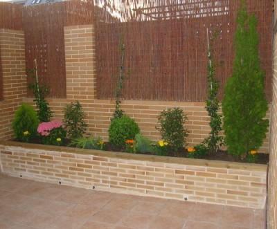 Jardineras con varias plantas