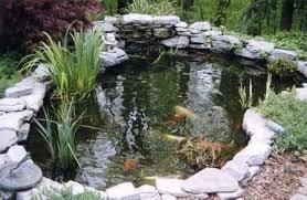Colocar un estanque en nuestro jardín