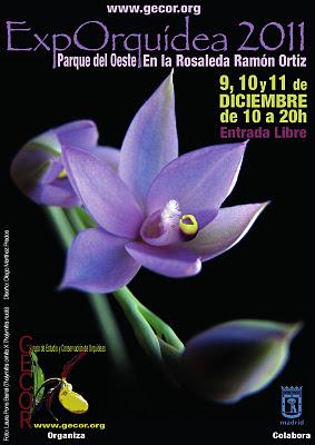ExpOrquidea 2011