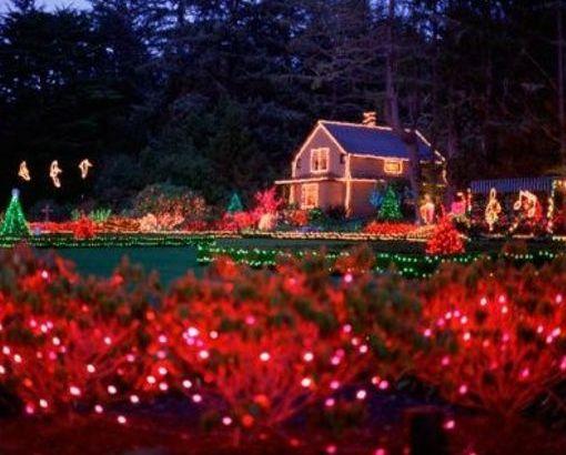Decoración navideña para el jardín